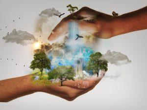 Consuminderen is belangrijk om de natuur te behouden!