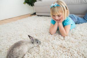 Kind en konijn opkleed